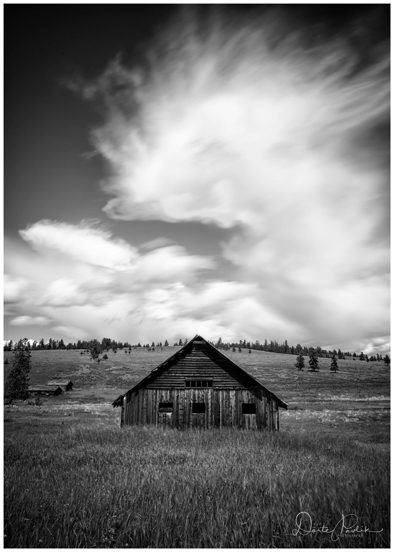 Enveloping Sky - Gang Ranch - Doeret Pavlik