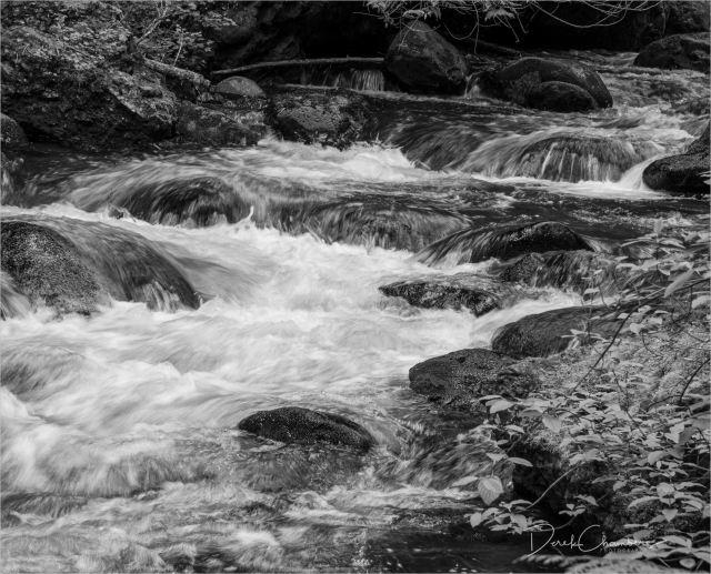 Complex Water - Eakin Creek PP - Derek Chambers DCP0636BW
