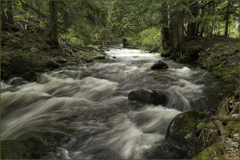 DCP0464 Eakin Creek Canyon PP - Derek Chambers
