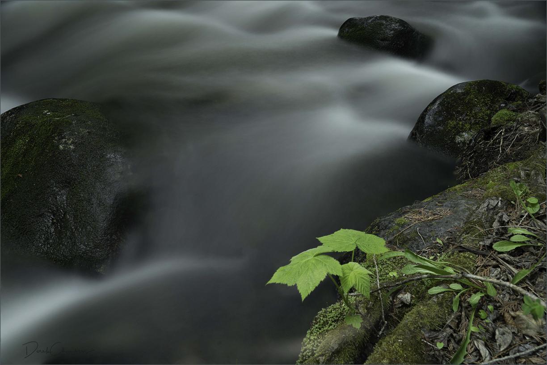 DCP0489 Eakin Creek PP - Long Exposure - Derek Chambers