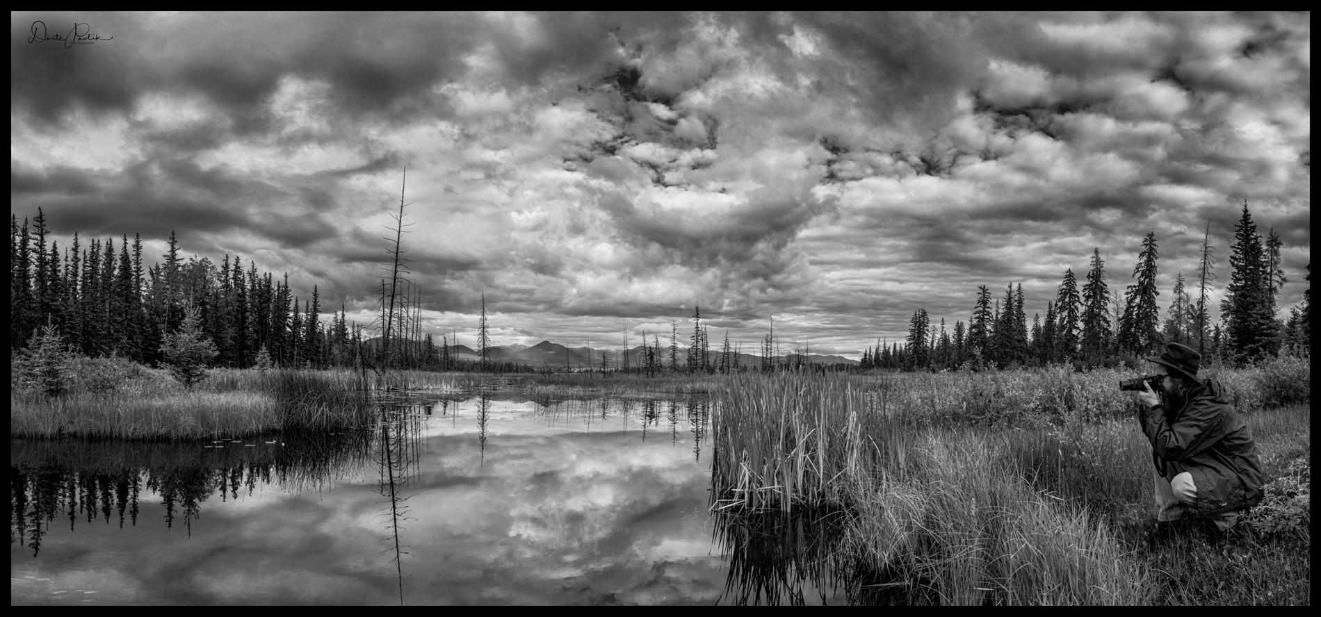 A Photographer's Delight - Near Meadow Lake - Doerte Pavlik
