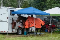 27 Complimentary Colours - Gloria Melnychuk at 70th Annual Bridge Lake Stampede (5292)