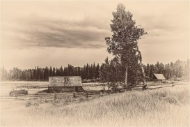 Old Homestead © Larry Citra