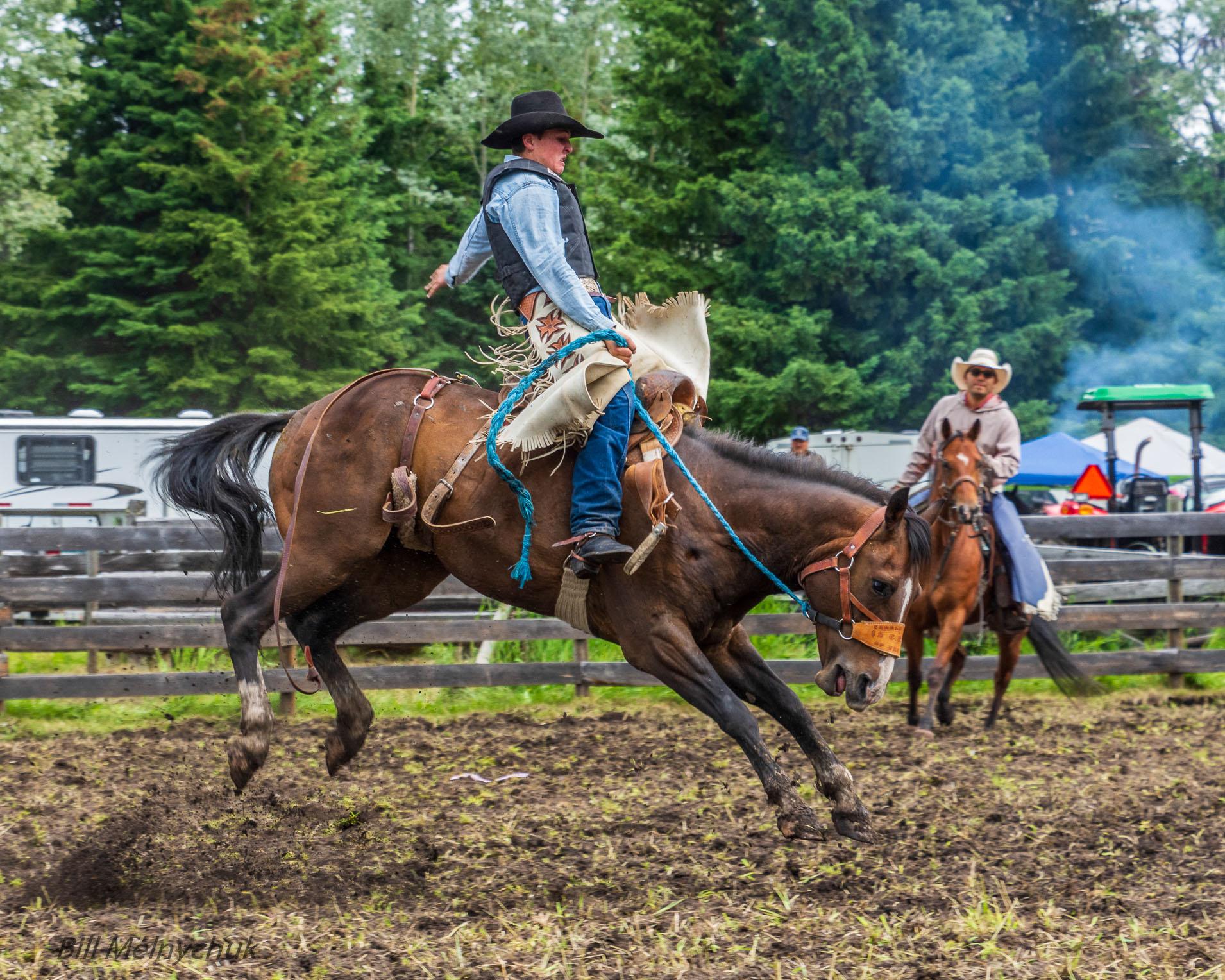 Rodeo_DSC0907-026 - Bill Melnycuk