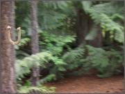 Scavenger Hunt #31 Horseshoe,K.Haggkvist
