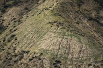 38 Cracks in Dry Earth - Doug B