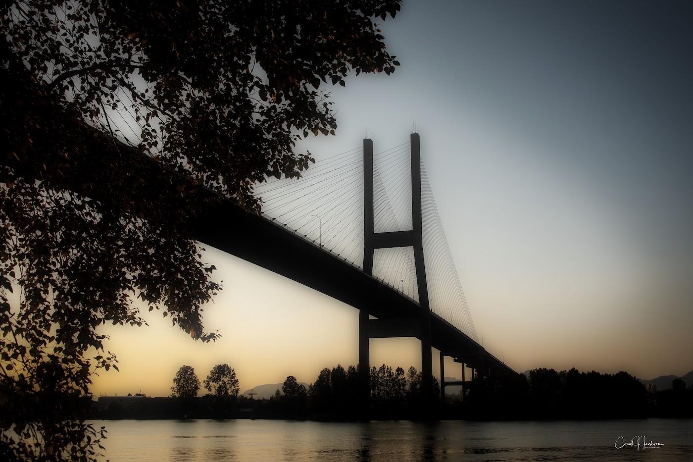 Alex Fraser Bridge - Carol Jackson