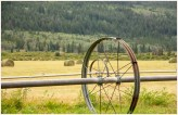 Circles in the Hayfield - Elkin Creek Guest Ranch - Nemiah Valley - AMBrown