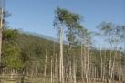 #10 Reflection - Elkin Creek Guest Ranch - Derek Chambers