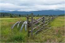 Fence-Elkin Creek Guest Ranch - © Sharon Jensen