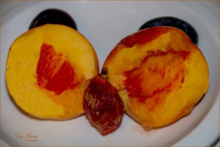 #24 Center of a Fruit- Gary Hardaker