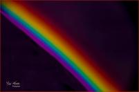 #27 Complementary colours (split)- Gary Hardaker