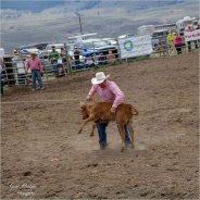 #6 Action (person) calf roping- Gary Hardaker