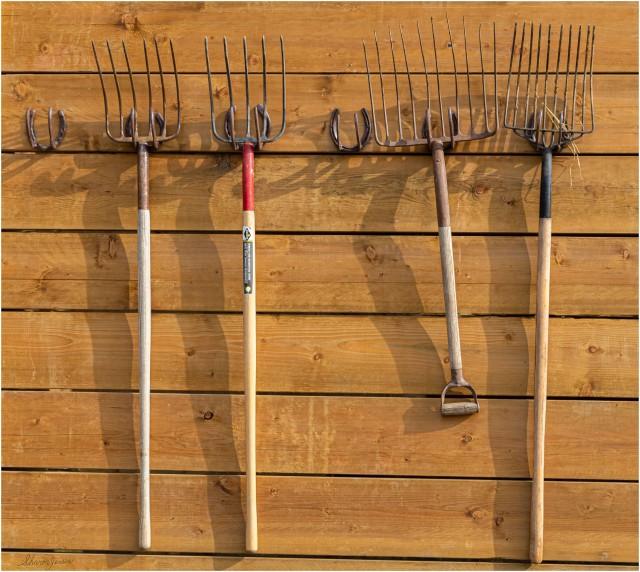 Manure Forks - © Sharon Jensen