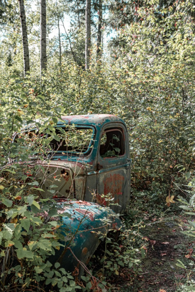 Old Truck at Quesnel Forks-0414-2-Pamela Faiers