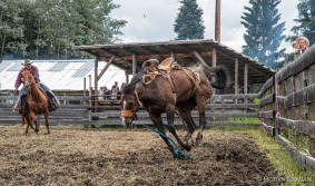 Saddlebronc - Bridge Lake Rodeo - Robyn Cowan