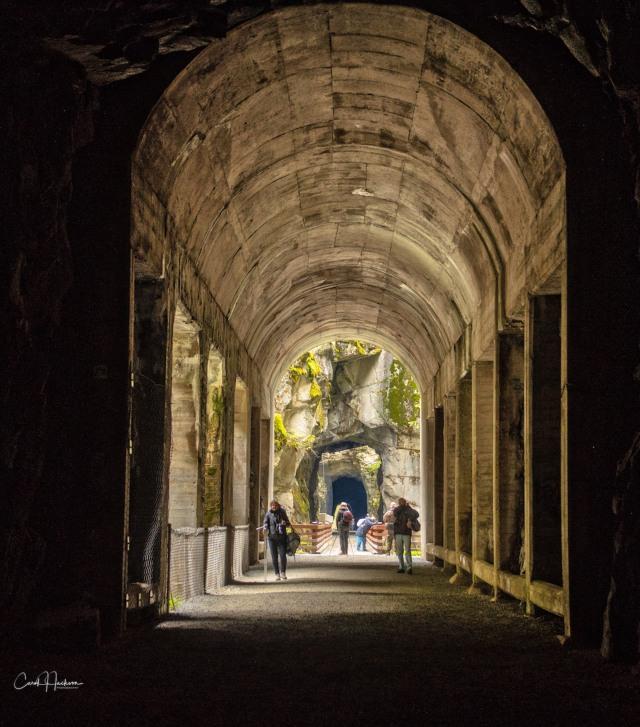 Tunnel Vision-CJJ