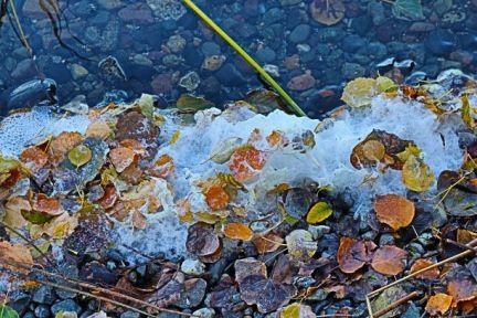 #6 Frozen Bubbles - Cliff Thorsteinson