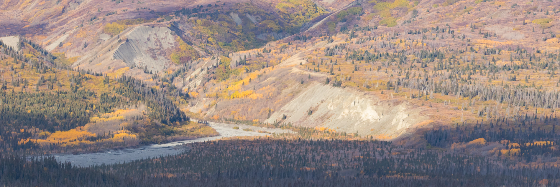Bend in the River on the way to Carcross - DMHopp