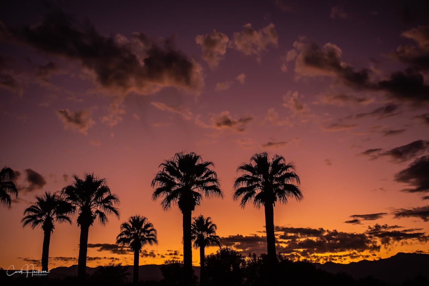 Blue Hour sunset No Filter-CJJ copy