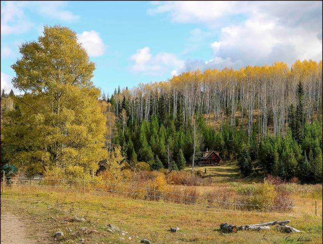 Cabin at Wolf Valley Ranch- Gary Hardaker