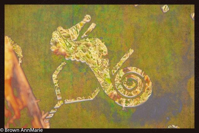 Seahorse - AnnMarie Brown