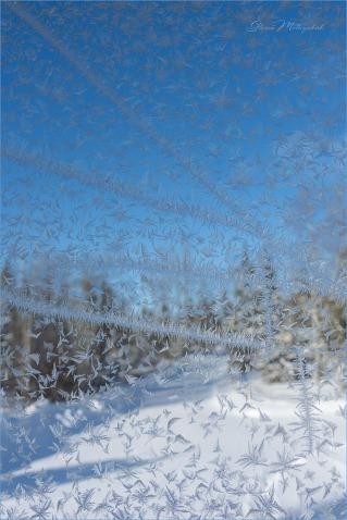 02 Winter Window - Gloria Melnychuk