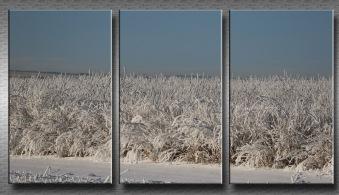 18 winter Triptych Doug B