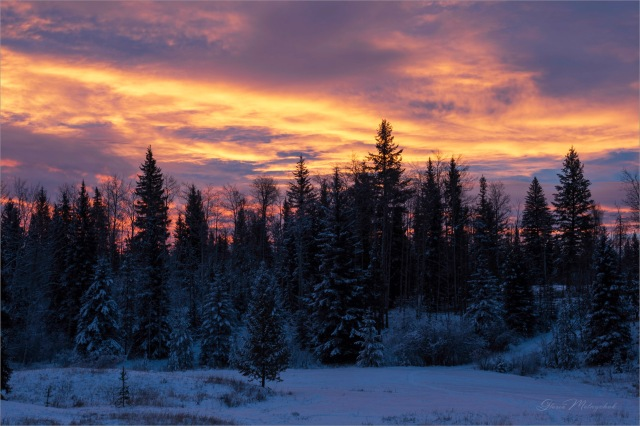 20 Winter Sunrise - Gloria Melnychuk_GMP9552-002