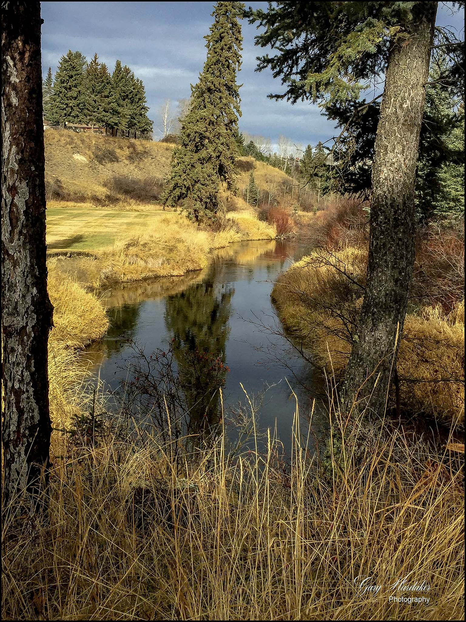 An Autumn Day in the Park- Gary Hardaker