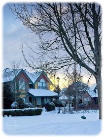 scavenger hunt # 15 A winter scene. Winter in the park. _