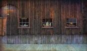 Three Windows and a Door - CJJ