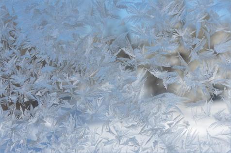 Winter Window_WGP2748-014 - Gloria Melnychuk
