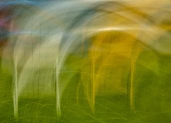 Larry Citra © Creative Workshop