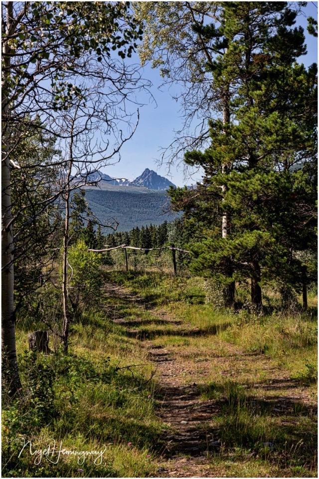 Nemaiah-Trail-8432 Nigel Hemingway