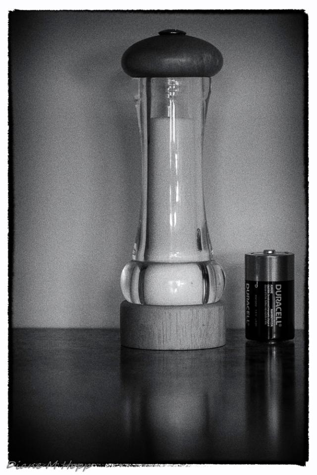 A Salt and Battery - Diane Hopp