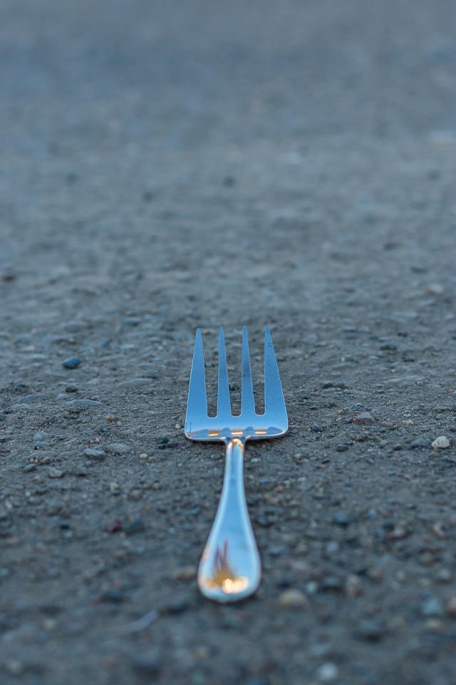 Fork in the road © Tamara Isaac