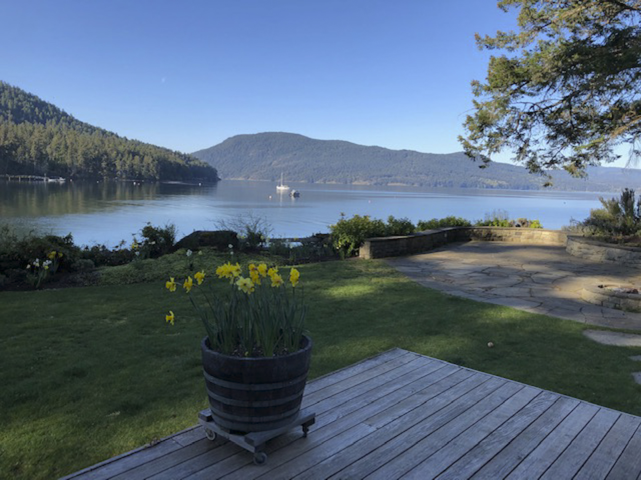 View From The Deck - Larry Citra