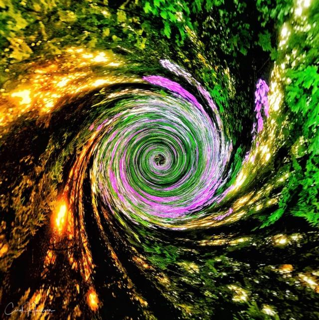 Swirling Vortex - Carol Jackson
