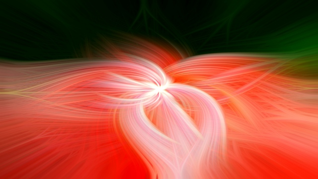 Tulip Twirl - Daryl Bell- Small