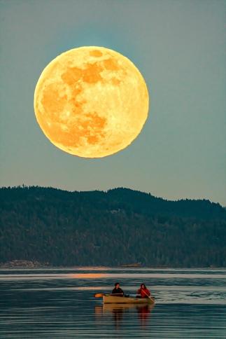 Larry Citra © Fernwood Moon
