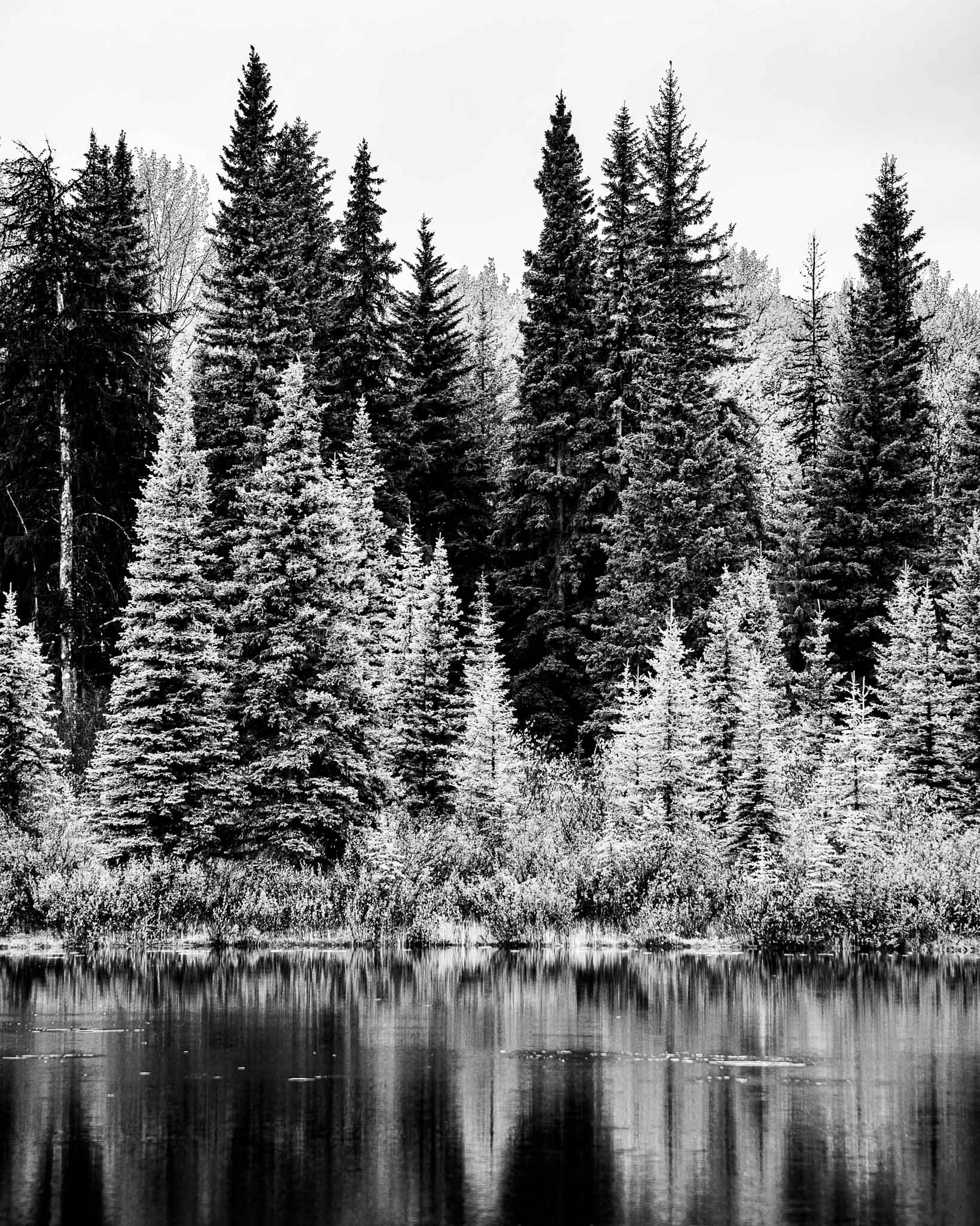 Montana Lake in BW - Larry Citra