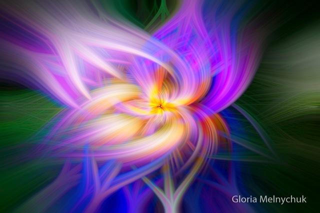 Iris - twirl - Gloria Melnychuk