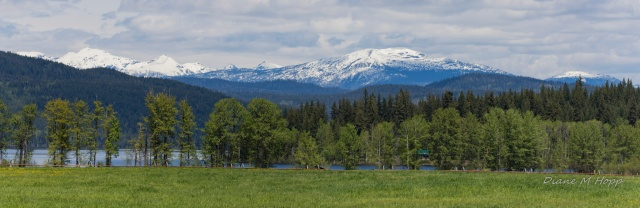 From Canim Road Looking towards Wells Gray - Diane Hopp