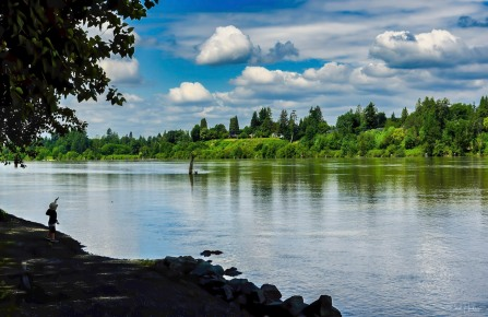 Tossing Rocks into the Fraser River - Carol Jackson