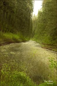 Bridge Creek (Impressionistic View)-Gary Hardaker.