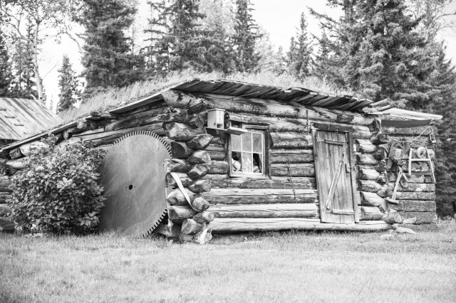 Monika Paterson_MHP6090 Old cabin with sawblade meadow lk rd BW wm