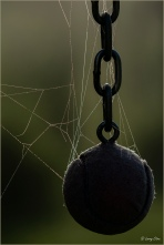 Ball and Chain © Larry Citra
