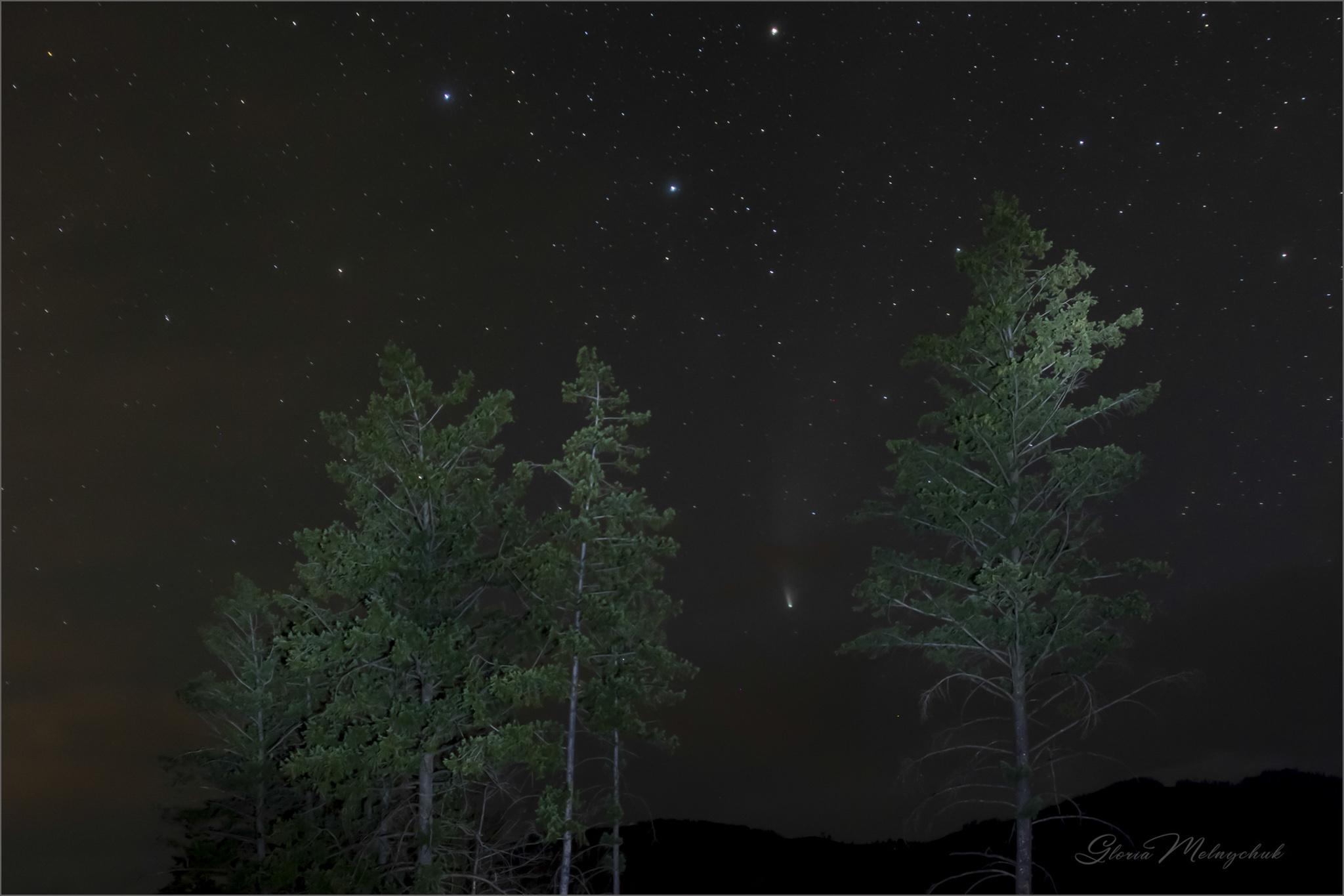 Comet Neowise_GMP2590-198 - Gloria Melnychuk