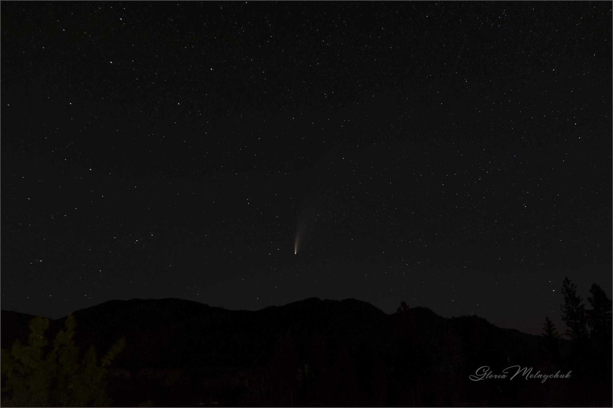 Comet Neowise_WGP4386-120 - Gloria Melnychuk